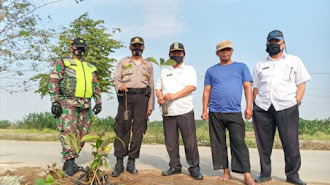 Lemahabang Tanam 8.000 Pohon di Kalen Waru