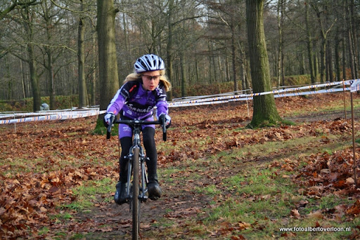 veldcross Circuit Duivenbos overloon 11-12-2011 (39).JPG