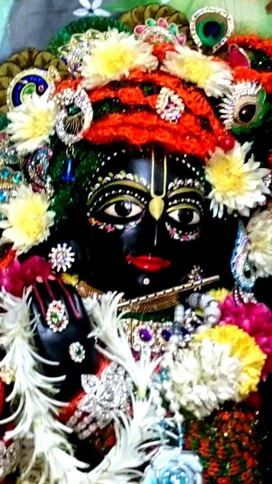 ISKCON Bhusawal Deity Darshan 23 Jan 2016 (8)
