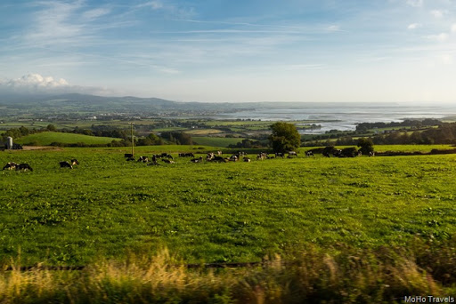 Ireland landscapes (1 of 1)