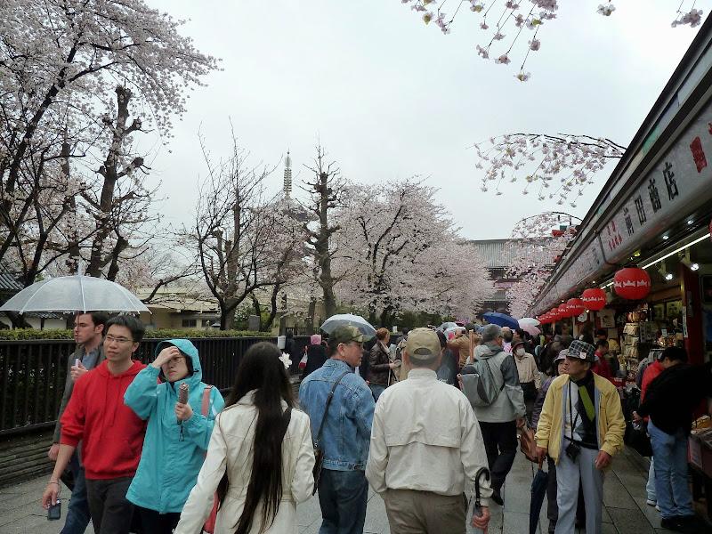2014 Japan - Dag 5 - mike-P1050596-0132.JPG