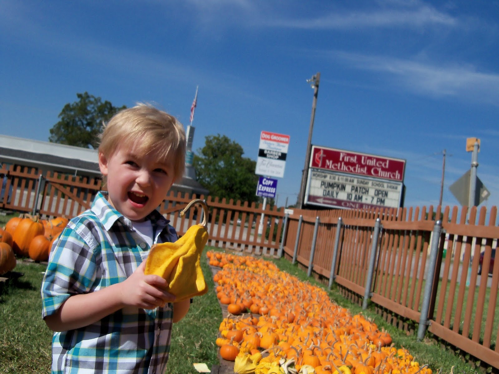 Pumpkin Patch 2015 - 100_0431.JPG