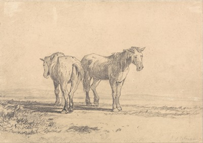 John_Sell_Cotman_-_Two_Old_Horses_Standing_in_a_Field_-_Google_Art_Project