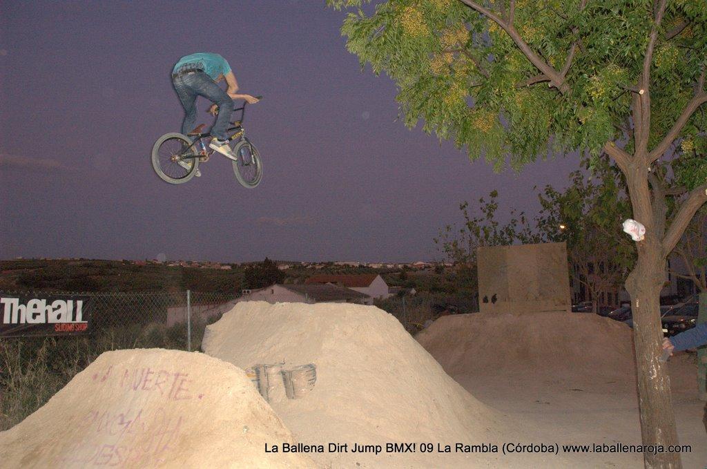 Ballena Dirt Jump BMX 2009 - BMX_09_0170.jpg