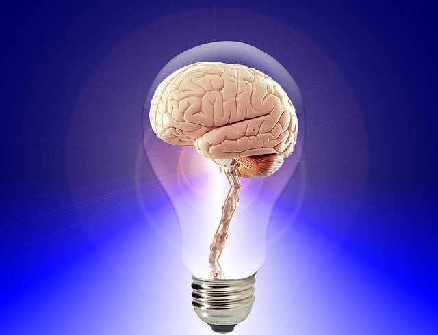 Nootropics Ultimate Guide - Memory Supplements - Goodlife Engineering - Ideas