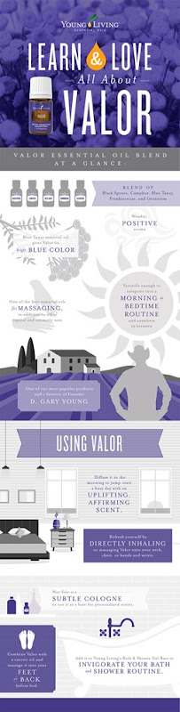 blog-Learn-Love_All-About-Valor_Infographic_US-3-002