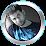 Ajit Kumar Patri's profile photo