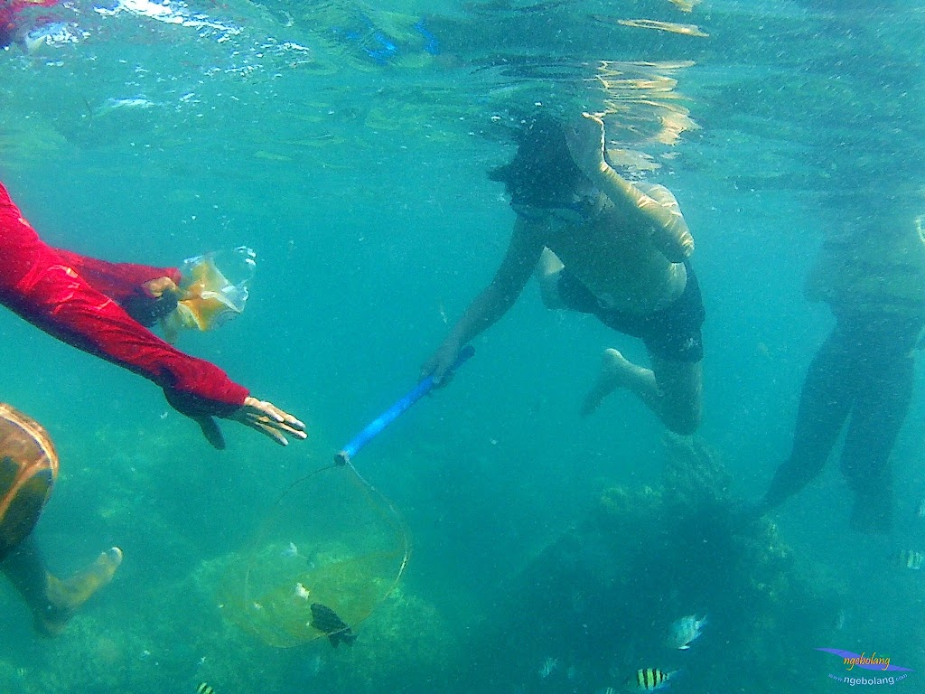 family trip pulau harapan, 1-2 agustus 2015 gopro 28