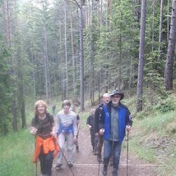 Wanderung Steinegg 05.06.17 (1).jpg