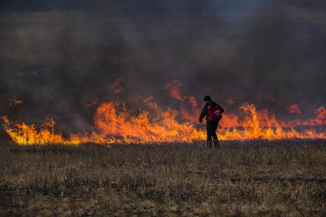 A firefighter battles a blaze in Russia's Zabaikalsky region in 2016. Photo: Agata Karasyova / Greenpeace