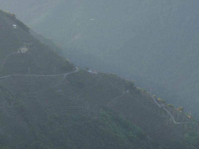 TAIWAN. Sun moon lake,Puli (région de Nantou) et retour à Taipei via Ylan - P1110146.JPG