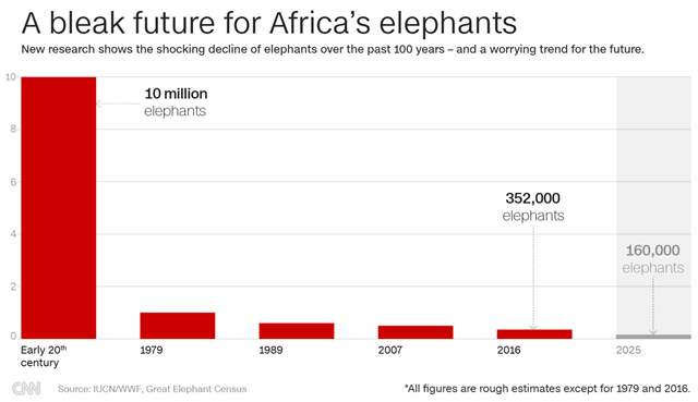 Estimated population of Africa elephants, from the early 20th century to the year 2016. Graphic: CNN