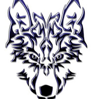 Profile picture of Sno4W_Wolf