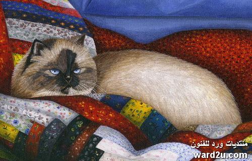 فنانة القطط كارول ويلسون Carol Wilson