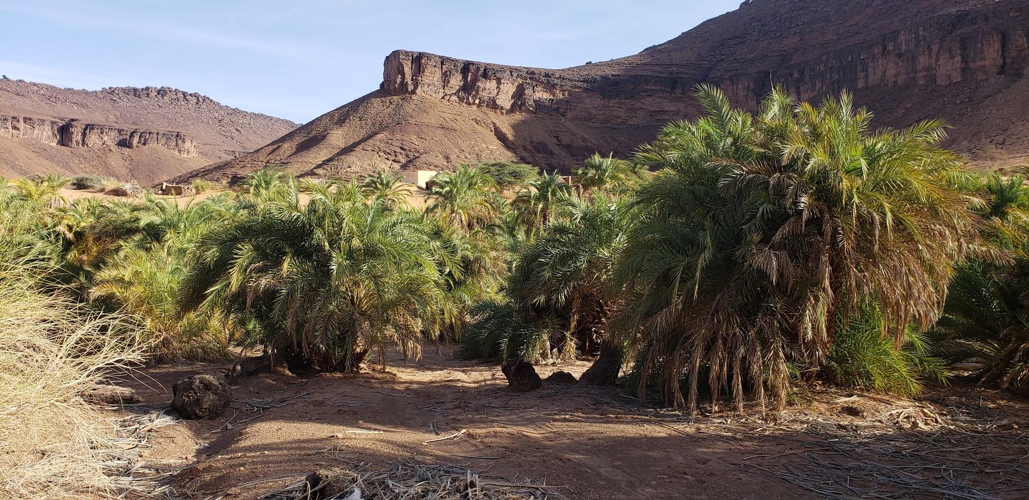 Reisinformatie Mauritanië