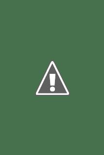 Watch Jobs Online Free in HD