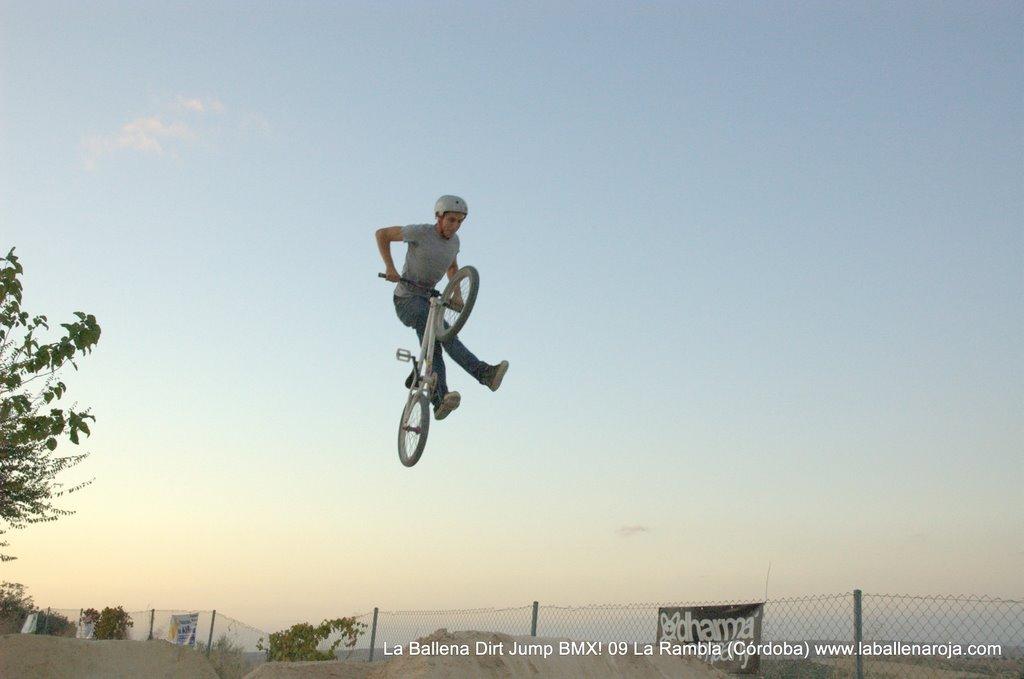 Ballena Dirt Jump BMX 2009 - BMX_09_0162.jpg