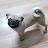 Lorrie Vee avatar image