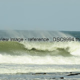 _DSC9994.thumb.jpg