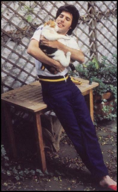 Freddie Mercury holding a cat
