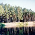 Белогорье - Заповедник лес на Ворскле 012.jpg