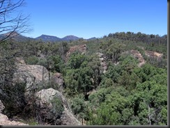171107 118 Warrumbungles Wambelong Nature Trail