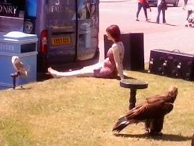 Lady laying in the Sun amongst tethered wild birds