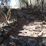 Track up the hill from Kianiy picnic area (102316)