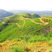 santiago-oaks-IMG_0448.jpg
