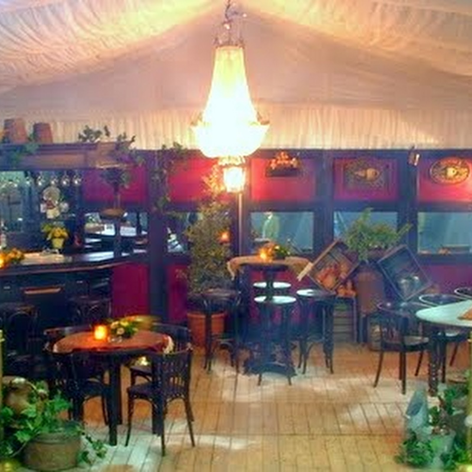 Bruin café   goldfish industries