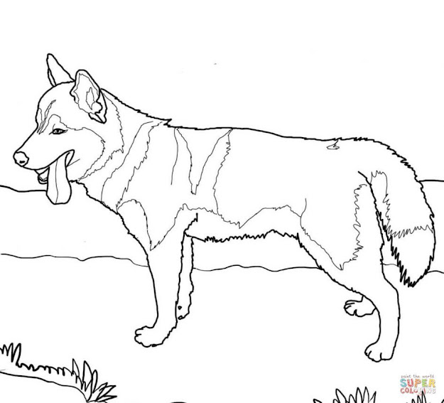 Husky Coloring Pages Download Coloring Pages Dog Coloring Pages Dog Coloring  Pages Coloring Pages Of Animals