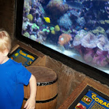 Downtown Aquarium - 116_3865.JPG