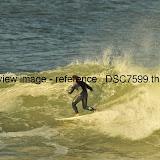 _DSC7599.thumb.jpg