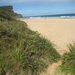 A track onto Garie Beach (44026)