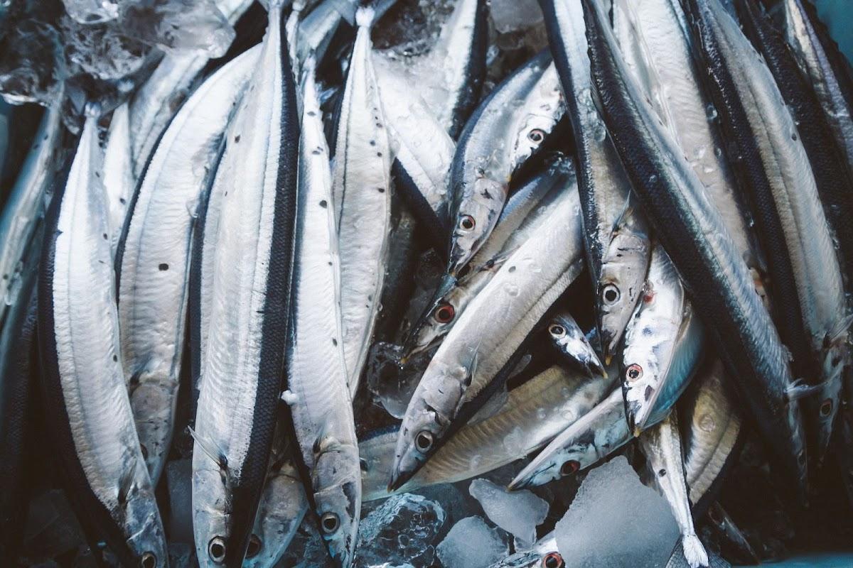 香ばし秋刀魚のトマトパエリア(ノンストップで紹介)のレシピ クラシル