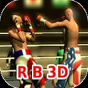 Ragdoll Boxing 3D icon