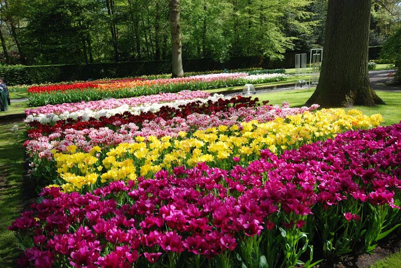 Die Gartenarchitektur: Frühling