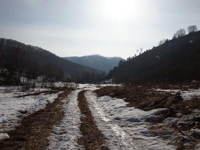дорога_весна