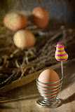 """Eggs and Holder"" by Witta Priester - 1st Place Special A"