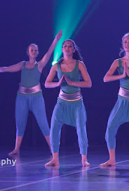 Han Balk Voorster dansdag 2015 avond-3100.jpg