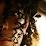 Lenin Gonzalez's profile photo