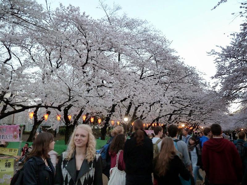 2014 Japan - Dag 1 - mike-P1050479-0015.JPG