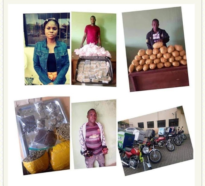 NDLEA Agents Disguise As Customers To Nab 10 Online Drug Traffickers.