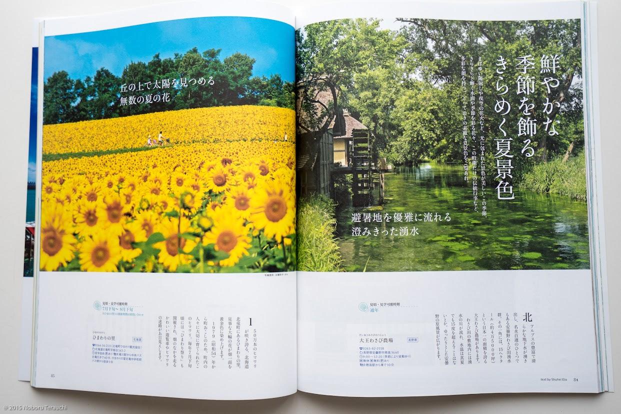 丘の上で太陽を見つめる無数の夏の花・ひまわりの里(P.85)