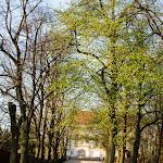 2015.04.23.,Klasztor wiosną,fot.H.L (9).jpg