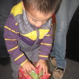 NL- Fiestas Navideñas 2011 - IMG_4590.JPG