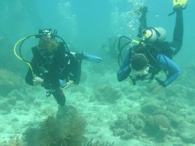 Bonaire 2011 - PICT0015.JPG