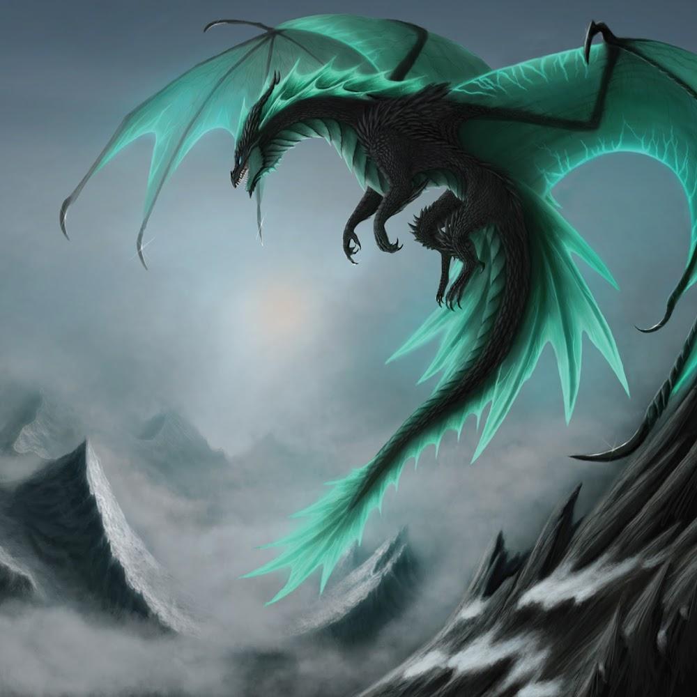 MAX_DragonGaming 12 avatar