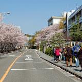 2014 Japan - Dag 9 - jordi-DSC_0734.JPG