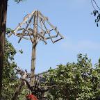 Guacamayas del zoológico de Isla Palma